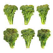 Big set of fresh broccoli with isolated on black background