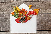 Autumn floral composition. Plants viburnum rowan berries dogrose fresh flowers colorful leaves in mail envelope on wooden background. Fall natural plants ecology concept. Flat lay top view, mockup