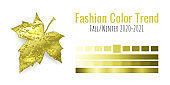 Fashion color trend Fall/Winter 2020-2021. Colour metallic palette with different shades of yellow color and gradient. Maple tree leaf on white background. Paint palette mock up. Vector illustration