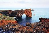 Unique basalt arch on Dyrholaey