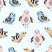 Cute pattern with color hand drawn doodle birds