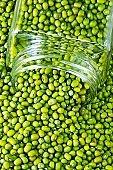 Green Mung beans and glass jar.