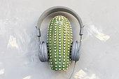 Headphones and ceramic cactus on gray background