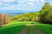 beautiful nature mountain scenery