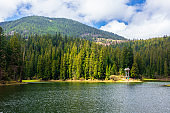 alpine mountain lake among the forest