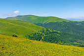 alpine scenery of carpathian mountains