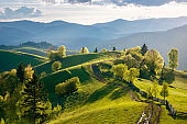 path through countryside fields