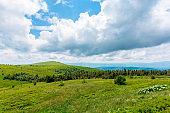 alpine meadows of mnt. Runa