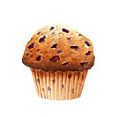 Fresh appetizing muffin with blueberry isolated on white background