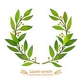 Laurel Bay wreath watercolor illustration