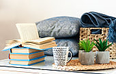 Cozy home interior decor: stack of books, plants in pots on a wicker stand