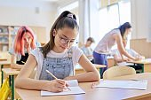Lesson in class of teenage children, in front girl sitting at desk writing in notebook