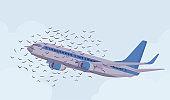 Passenger plane bird flock strike