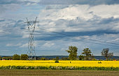 Electric tower and yellow rape field. Beautiful landscape in Poland