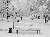 City park after snowfall. Bench and trees covered with snow. Weather in winter
