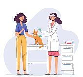 Veterinary concept with animal and doctor in vet clinic.