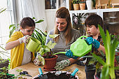 Mother with her children repotting plants together at home garden. Spring gardening.