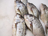 Fish Store restaurant