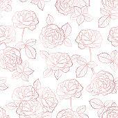 Roses Flowers Vector Outline. Rose Gold Flower and Leaves Seamless Pattern. Pink Floral Vintage Background