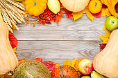 Autumn thanksgiving background with pumpkins, rye, melon, apples, pear and colorful foliage on wooden table. Top view with copy space for your text
