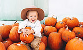 Child picking pumpkins at pumpkin patch. Cute little child dressed like a farmer playing among squash at farm market.