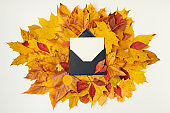 autumn flat lay with letter and leaves on white