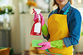 modern woman with cleaning agent and sponge