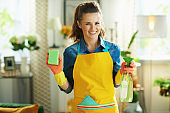 smiling housewife with cleaning agent and sponge housecleaning