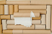 flat lay on toilet paper tubes background