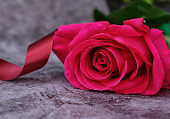 A bouquet of three red roses on a gray background with a place for text
