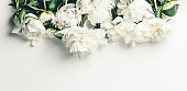 Flat-lay of Beautiful peony flowers over white background, top view, copy space