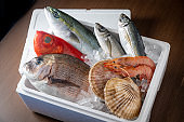 fresh japanese seafood in styrofoam box with ice
