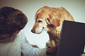 Man working on laptop at home, his pet dog is next to him on chair