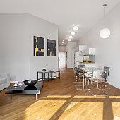 Spacious and long loft apartment