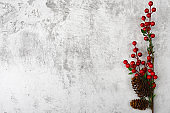 On a brown branch with bright red berries, and cones. Against a background of gray plaster.