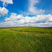Summer natural landscape, meadow, field, hills. Beautiful blue sky with clouds.