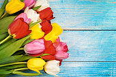 Bright bouquet of multi-colored tulips close-up on wooden boards of blue color.