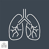 Lungs related vector thin line icon