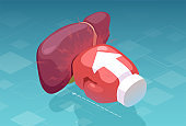 Vector of a boxing glove punching a human liver. Hepatic pain and disease concept