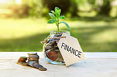 Finance. Glass jar with coins and a plant in it, with a label on the jar and a few coins on a wooden table, natural background. Finance and investment concept.