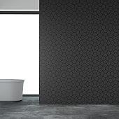 Empty bathroom interior new