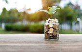 Plant growing from jar full of coins