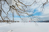 Winter landscape with tree branches and hiker