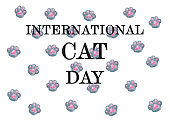 International Cat Day. Beautiful card. Close up