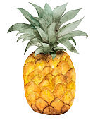 Bright picture with the image of painted fruits