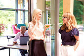 Group of business woman talking to each other in the office