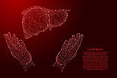Liver human organ and two holding, protecting hands from futuristic polygonal red lines and glowing stars for banner, poster, greeting card.