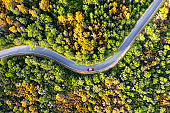 Aerial view of car on a country road