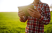 Tablet in the hands of a farmer. Smart farm.