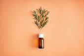 Bottle of rosemary oil on color background